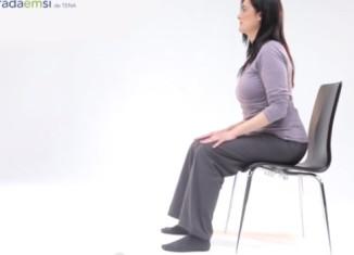 Descubra os músculos do pavimento pélvico