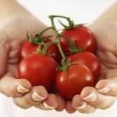 Licopeno: dê cor vermelha à sua dieta